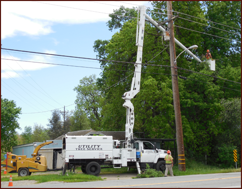 Utility Tree is your source for professional utility line clearance services